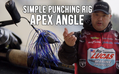 WATCH Apex Angle: Ken Mah's Simple Punching Rig